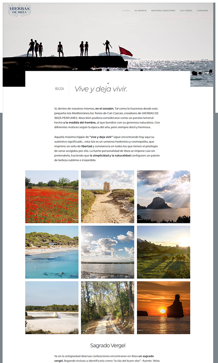Algunas páginas web diseñadas por nosotros
